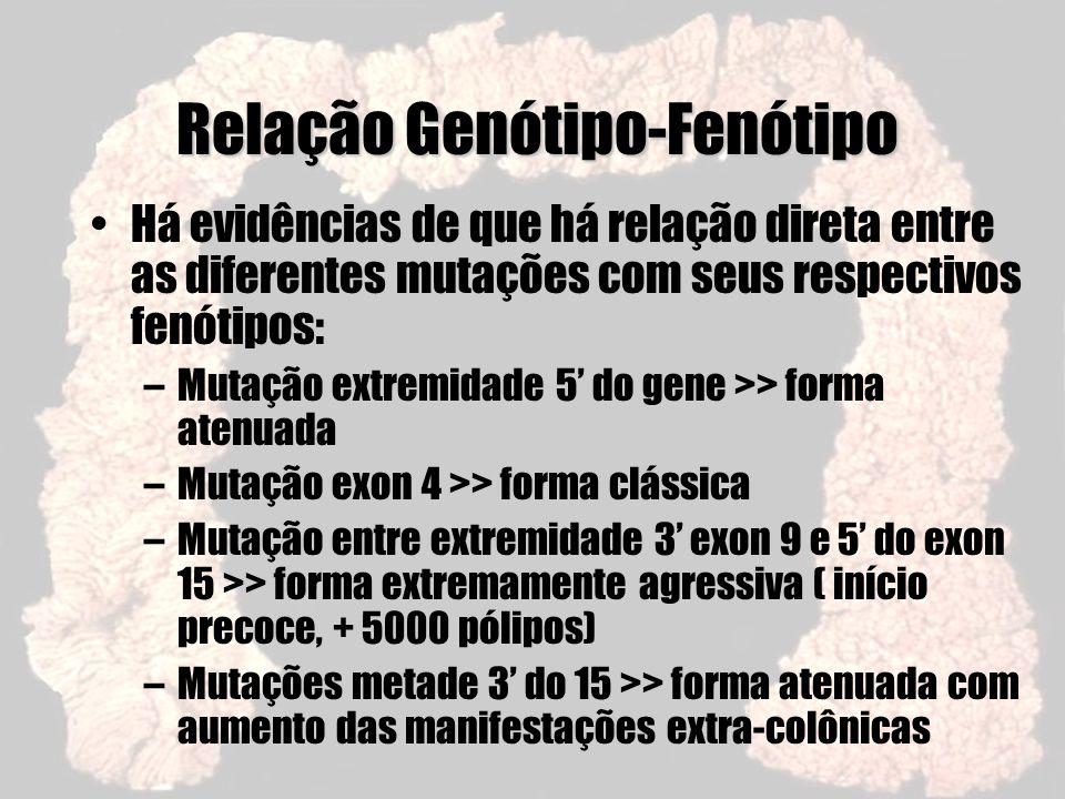 Relação Genótipo-Fenótipo Há evidências de que há relação direta entre as diferentes mutações com seus respectivos fenótipos: –Mutação extremidade 5 d