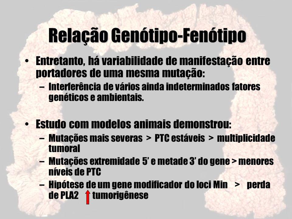 Relação Genótipo-Fenótipo Entretanto, há variabilidade de manifestação entre portadores de uma mesma mutação: –Interferência de vários ainda indetermi