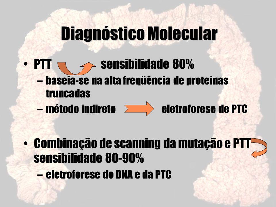 Diagnóstico Molecular PTT sensibilidade 80% –baseia-se na alta freqüência de proteínas truncadas –método indireto eletroforese de PTC Combinação de sc