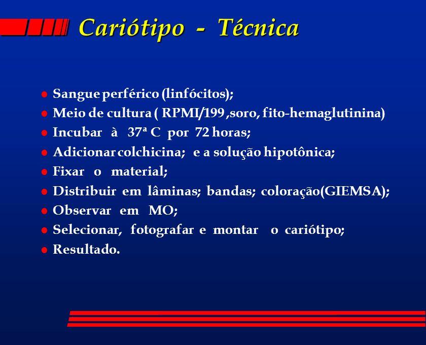 Cariótipo - Técnica l Sangue perférico (linfócitos); l Meio de cultura ( RPMI/199,soro, fito-hemaglutinina) l Incubar à 37ª C por 72 horas; l Adiciona