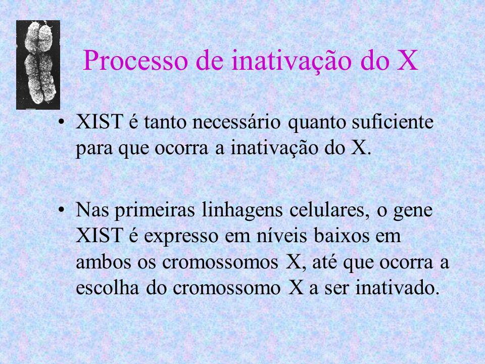 Processo de inativação do X XIST é tanto necessário quanto suficiente para que ocorra a inativação do X. Nas primeiras linhagens celulares, o gene XIS