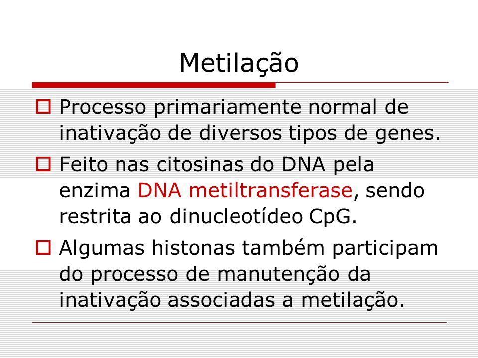 Metilação Processo primariamente normal de inativação de diversos tipos de genes. Feito nas citosinas do DNA pela enzima DNA metiltransferase, sendo r