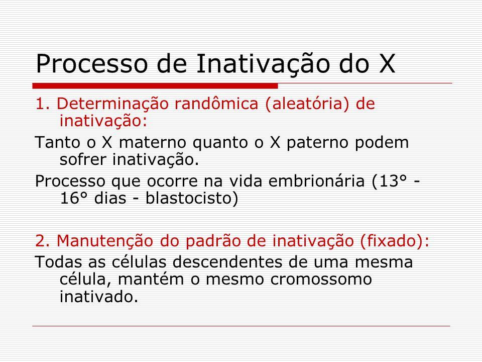 Processo de Inativação do X 1. Determinação randômica (aleatória) de inativação: Tanto o X materno quanto o X paterno podem sofrer inativação. Process