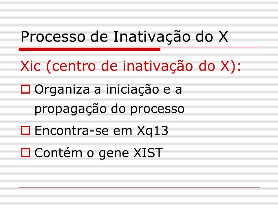 Processo de Inativação do X Xic (centro de inativação do X): Organiza a iniciação e a propagação do processo Encontra-se em Xq13 Contém o gene XIST