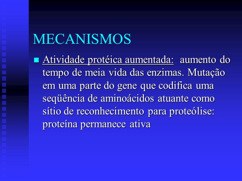 MECANISMOS Atividade protéica aumentada: aumento do tempo de meia vida das enzimas. Mutação em uma parte do gene que codifica uma seqüência de aminoác