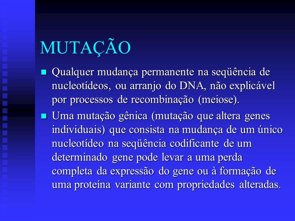 MUTAÇÃO Qualquer mudança permanente na seqüência de nucleotídeos, ou arranjo do DNA, não explicável por processos de recombinação (meiose). Qualquer m