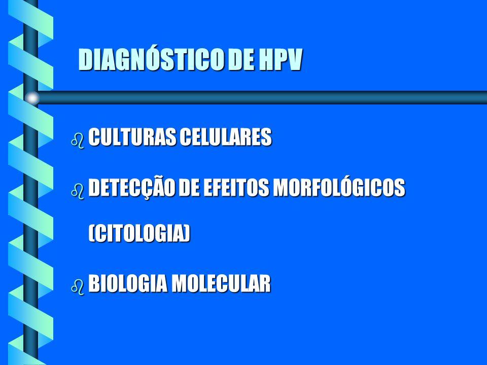 DIAGNÓSTICO DE HPV b CULTURAS CELULARES b DETECÇÃO DE EFEITOS MORFOLÓGICOS (CITOLOGIA) b BIOLOGIA MOLECULAR