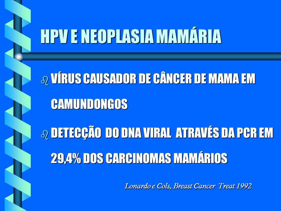 HPV E NEOPLASIA MAMÁRIA b VÍRUS CAUSADOR DE CÂNCER DE MAMA EM CAMUNDONGOS DETECÇÃO DO DNA VIRAL ATRAVÉS DA PCR EM 29,4% DOS CARCINOMAS MAMÁRIOS Lonard
