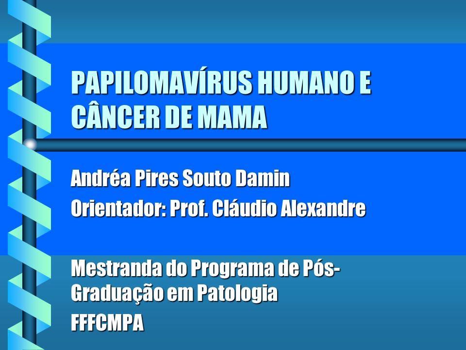 PAPILOMAVÍRUS HUMANO E CÂNCER DE MAMA Andréa Pires Souto Damin Orientador: Prof. Cláudio Alexandre Mestranda do Programa de Pós- Graduação em Patologi