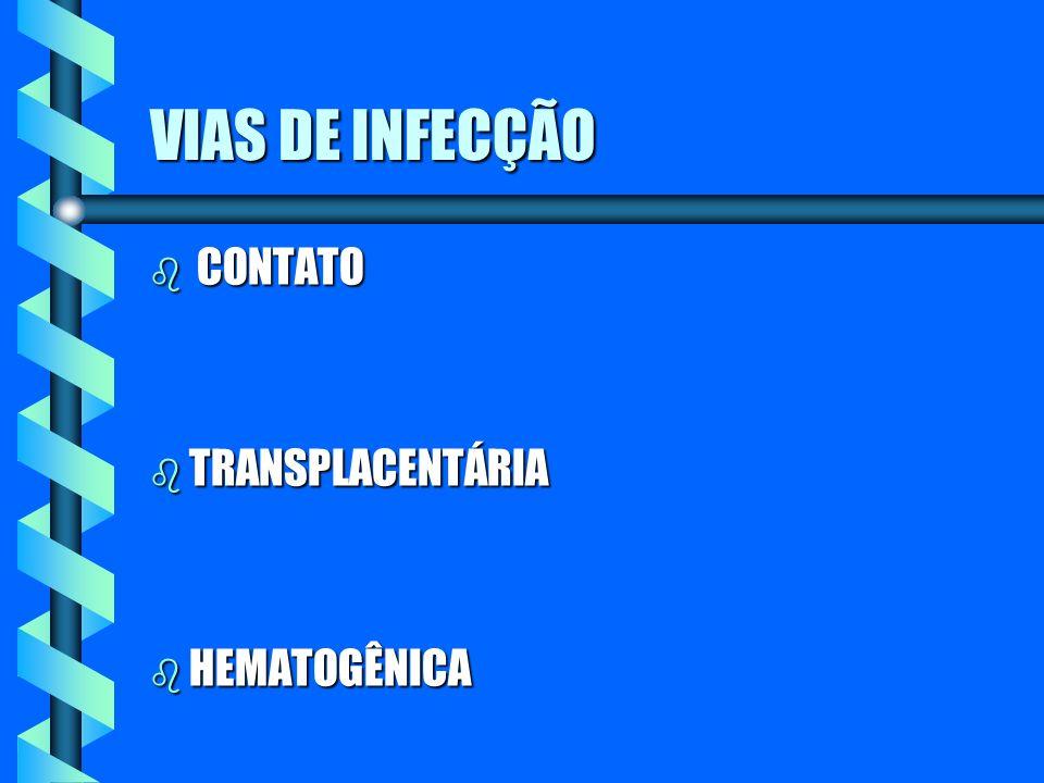 VIAS DE INFECÇÃO b CONTATO b TRANSPLACENTÁRIA b HEMATOGÊNICA