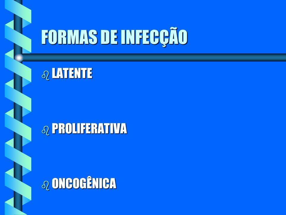 FORMAS DE INFECÇÃO b LATENTE b PROLIFERATIVA b ONCOGÊNICA