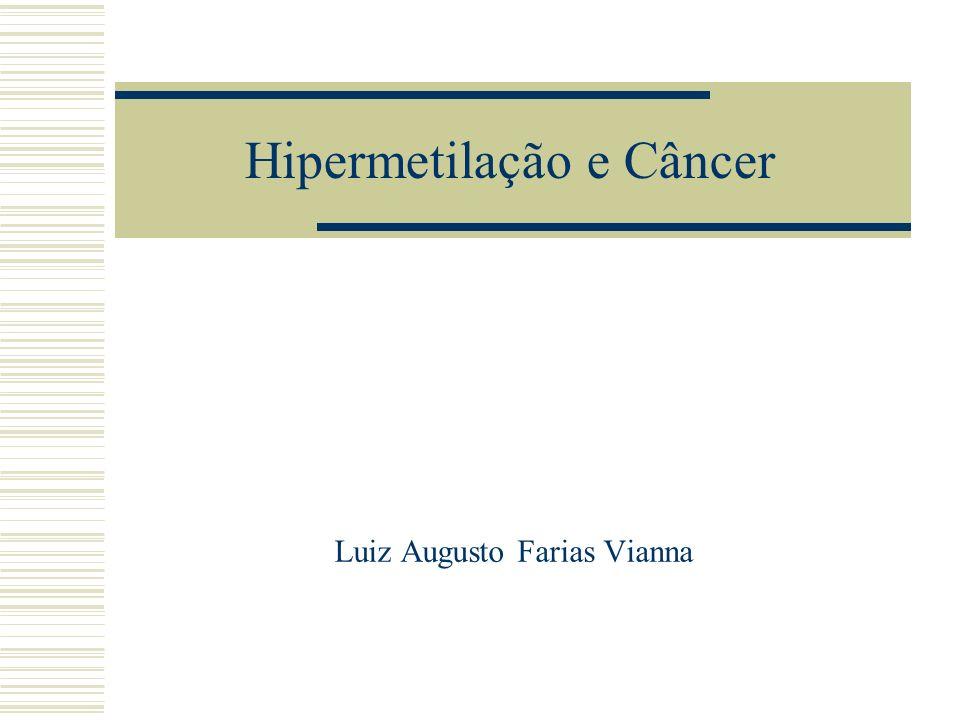 Hipermetilação e Câncer Luiz Augusto Farias Vianna
