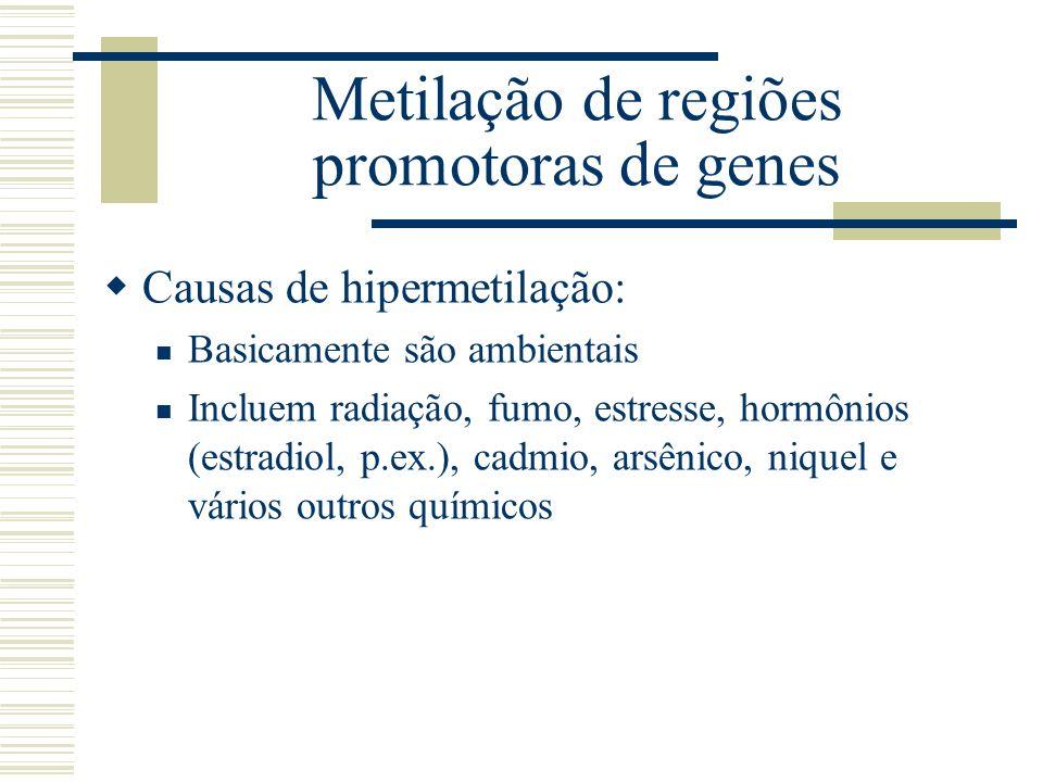 Metilação de regiões promotoras de genes Causas de hipermetilação: Basicamente são ambientais Incluem radiação, fumo, estresse, hormônios (estradiol,