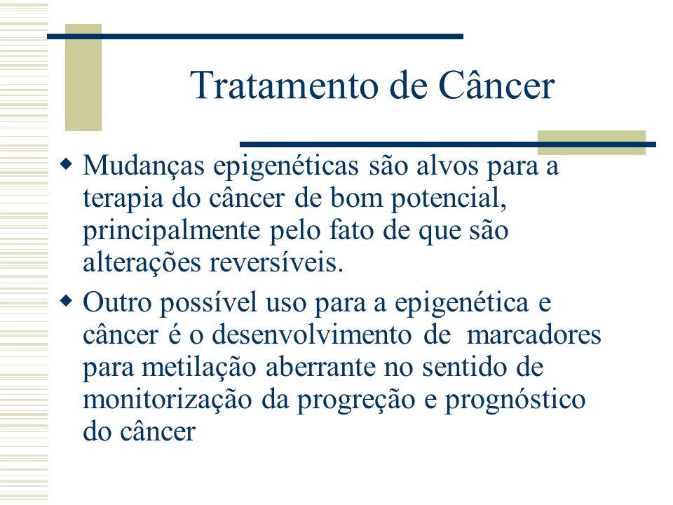 Tratamento de Câncer Mudanças epigenéticas são alvos para a terapia do câncer de bom potencial, principalmente pelo fato de que são alterações reversí