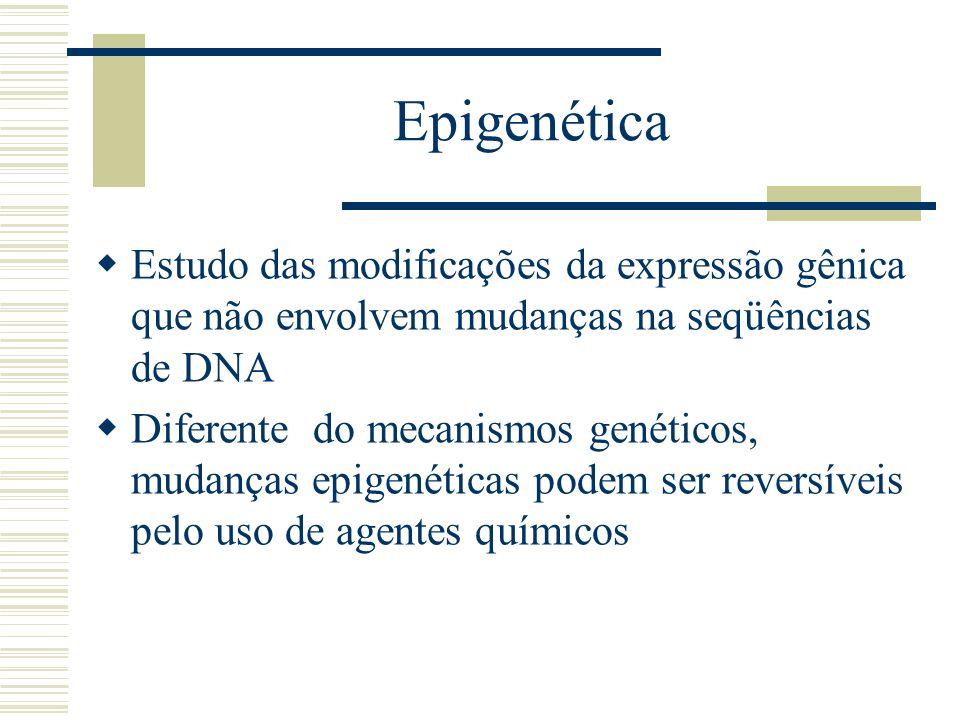Epigenética Estudo das modificações da expressão gênica que não envolvem mudanças na seqüências de DNA Diferente do mecanismos genéticos, mudanças epi
