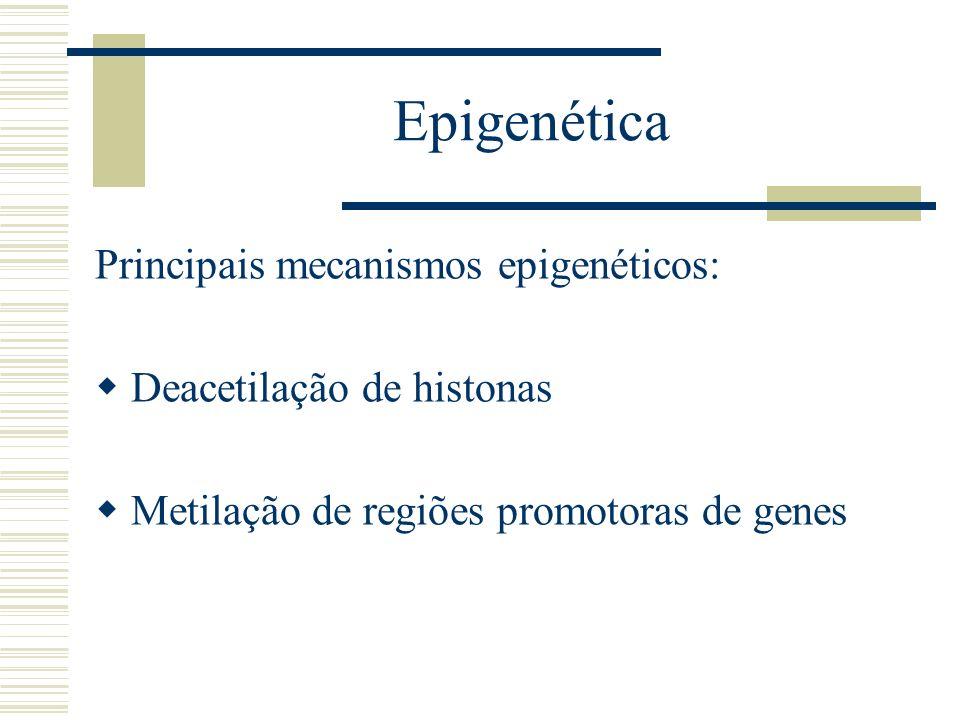 Epigenética Principais mecanismos epigenéticos: Deacetilação de histonas Metilação de regiões promotoras de genes
