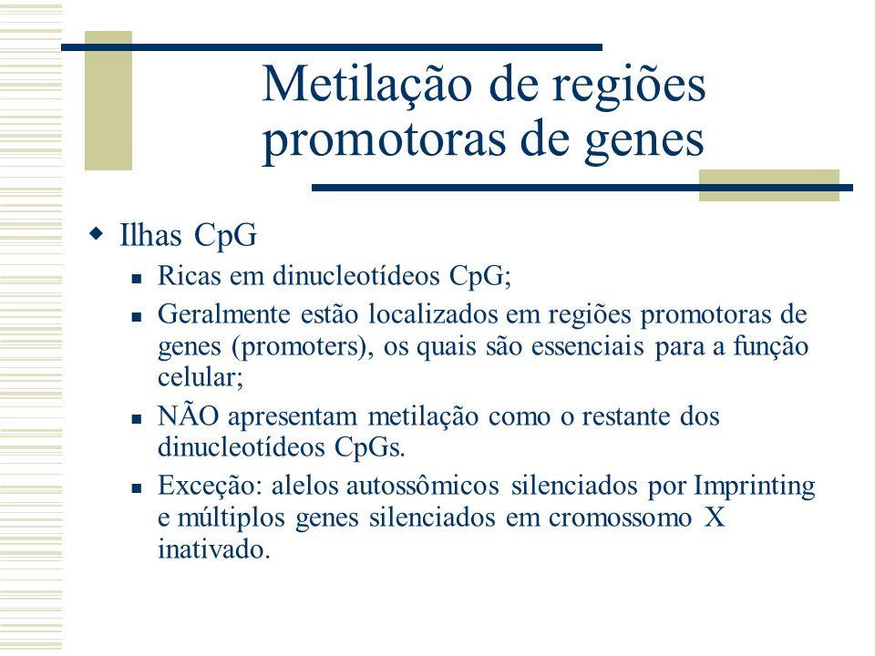 Metilação de regiões promotoras de genes Ilhas CpG Ricas em dinucleotídeos CpG; Geralmente estão localizados em regiões promotoras de genes (promoters