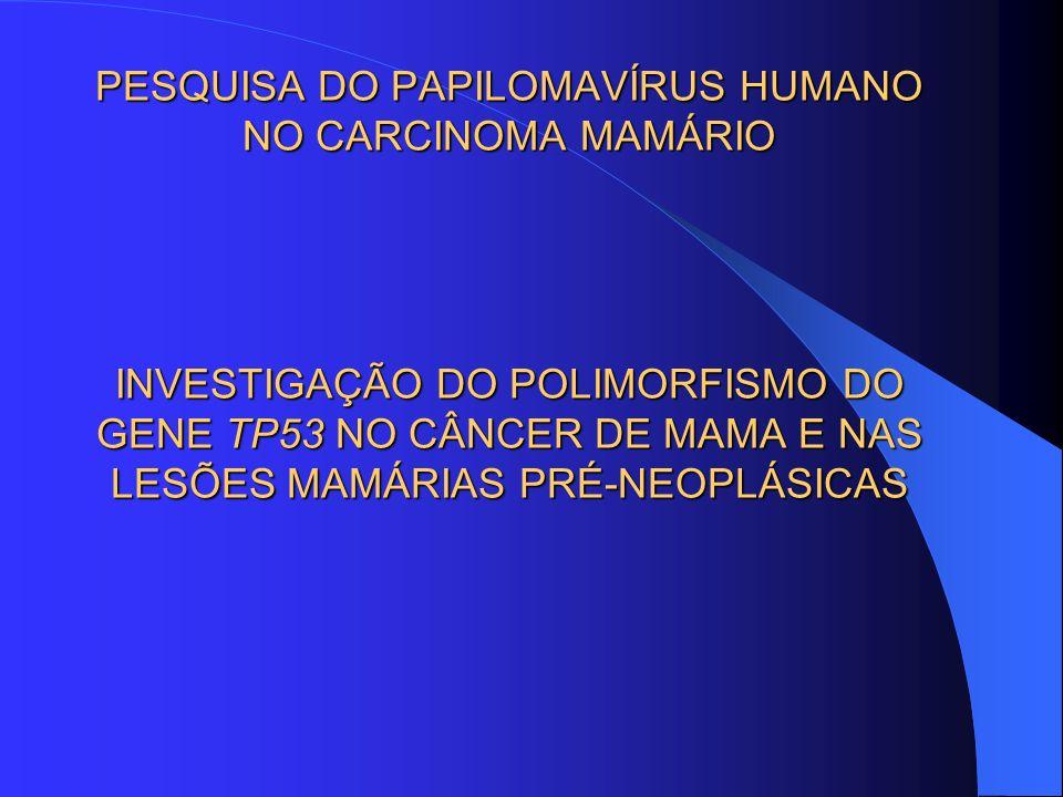 PESQUISA DO PAPILOMAVÍRUS HUMANO NO CARCINOMA MAMÁRIO INVESTIGAÇÃO DO POLIMORFISMO DO GENE TP53 NO CÂNCER DE MAMA E NAS LESÕES MAMÁRIAS PRÉ-NEOPLÁSICA