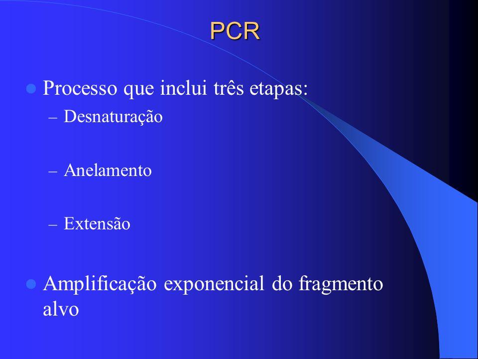 PCR Processo que inclui três etapas: – Desnaturação – Anelamento – Extensão Amplificação exponencial do fragmento alvo