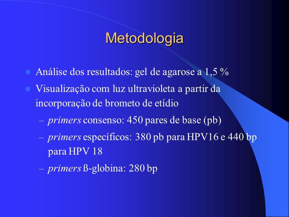 Metodologia Análise dos resultados: gel de agarose a 1,5 % Visualização com luz ultravioleta a partir da incorporação de brometo de etídio – primers c