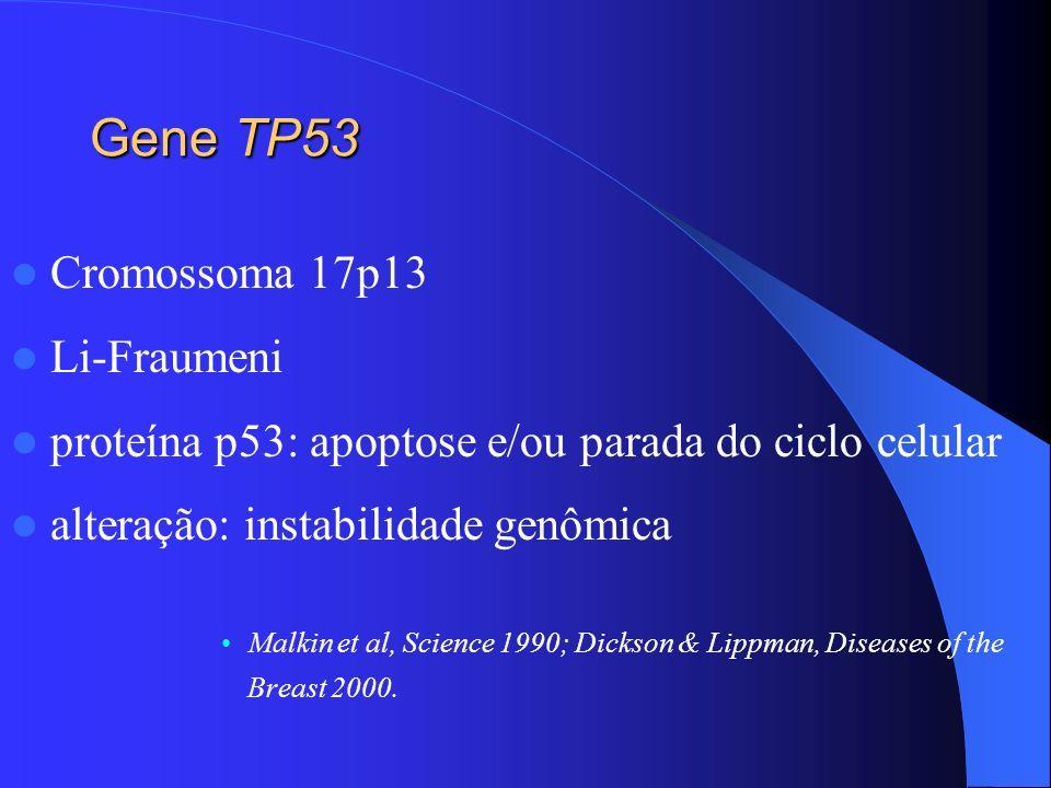 Gene TP53 Cromossoma 17p13 Li-Fraumeni proteína p53: apoptose e/ou parada do ciclo celular alteração: instabilidade genômica Malkin et al, Science 199