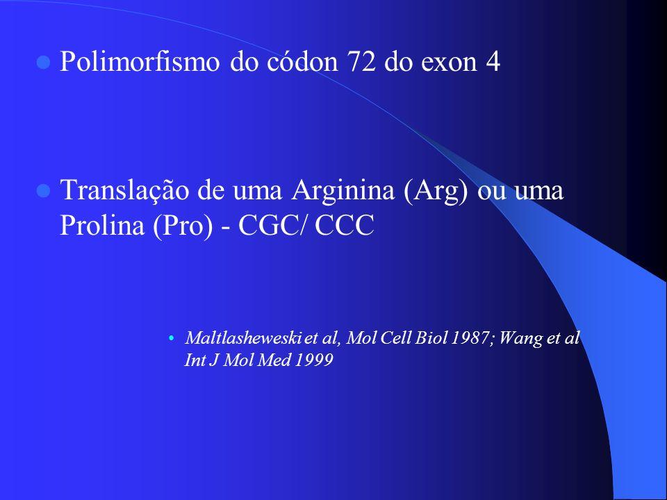 Polimorfismo do códon 72 do exon 4 Translação de uma Arginina (Arg) ou uma Prolina (Pro) - CGC/ CCC Maltlasheweski et al, Mol Cell Biol 1987; Wang et