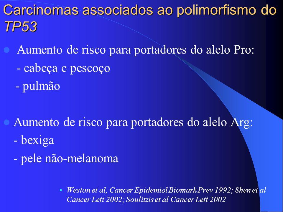 Carcinomas associados ao polimorfismo do TP53 Aumento de risco para portadores do alelo Pro: - cabeça e pescoço - pulmão Aumento de risco para portado
