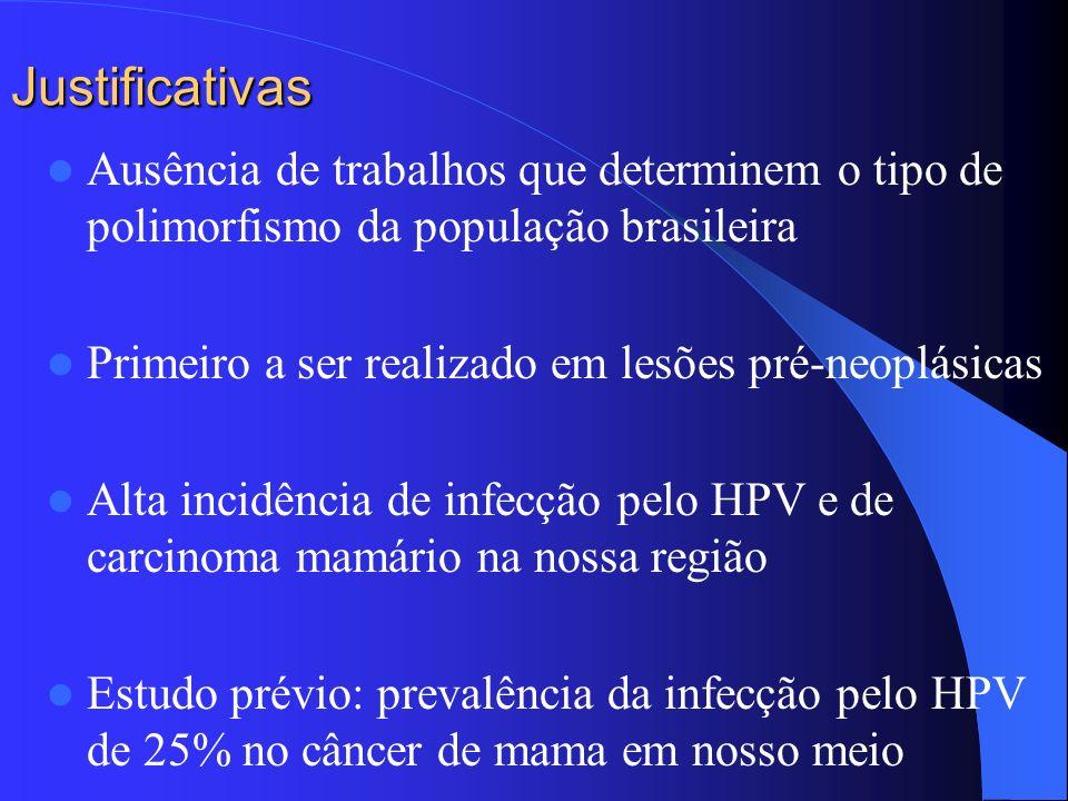 Justificativas Ausência de trabalhos que determinem o tipo de polimorfismo da população brasileira Primeiro a ser realizado em lesões pré-neoplásicas