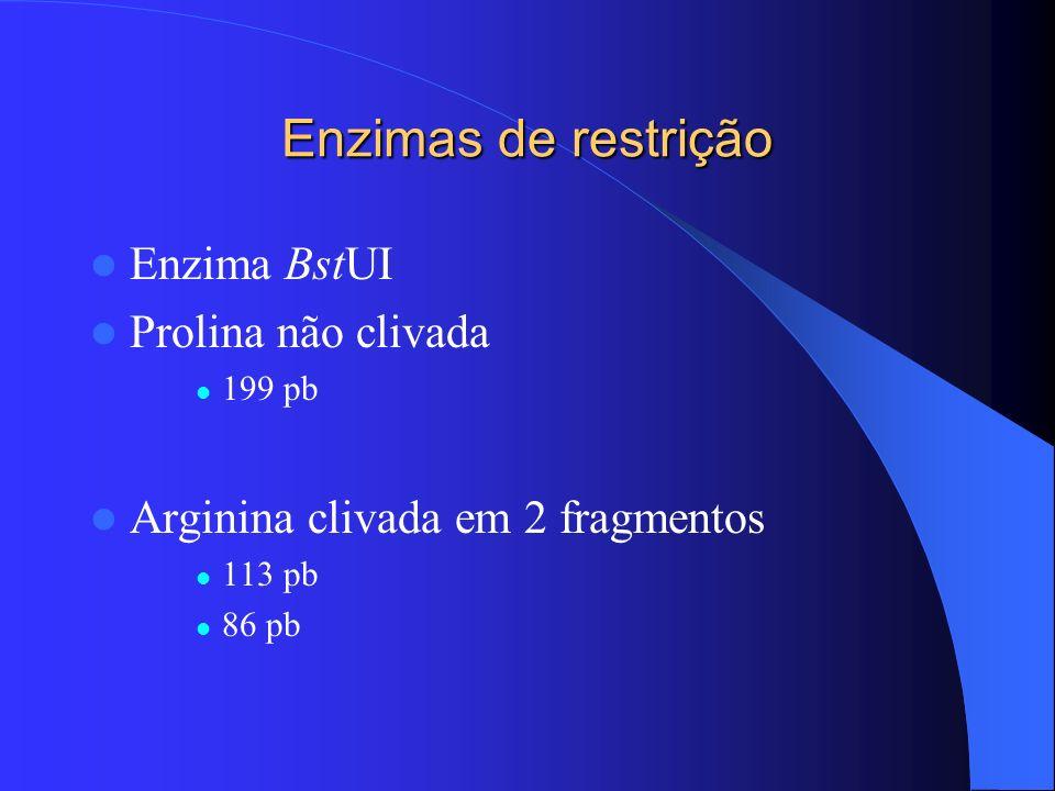 Enzimas de restrição Enzima BstUI Prolina não clivada 199 pb Arginina clivada em 2 fragmentos 113 pb 86 pb