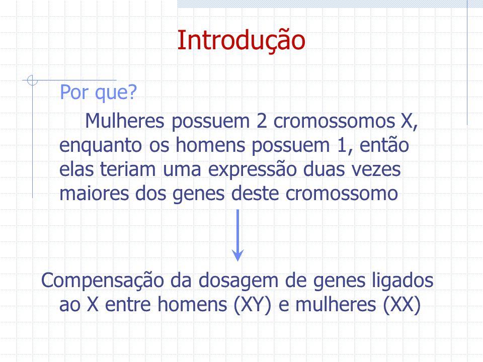 Por que? Mulheres possuem 2 cromossomos X, enquanto os homens possuem 1, então elas teriam uma expressão duas vezes maiores dos genes deste cromossomo
