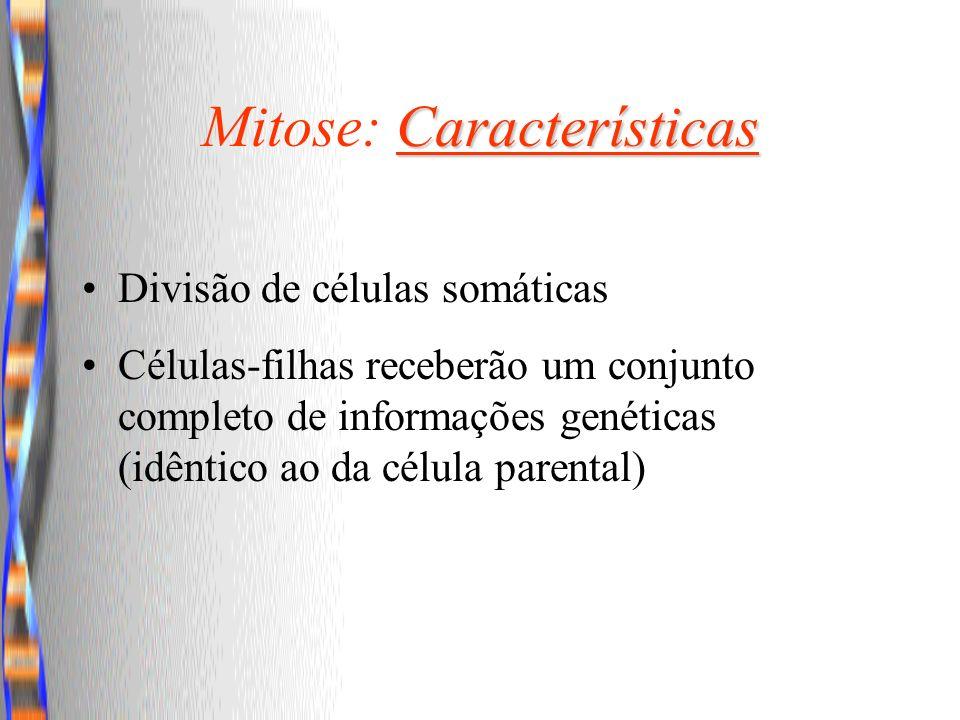 Características Mitose: Características Divisão de células somáticas Células-filhas receberão um conjunto completo de informações genéticas (idêntico
