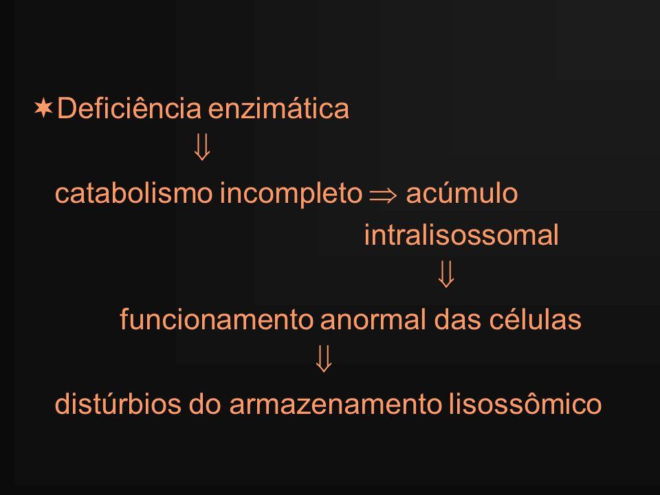 Deficiência enzimática catabolismo incompleto acúmulo intralisossomal funcionamento anormal das células distúrbios do armazenamento lisossômico