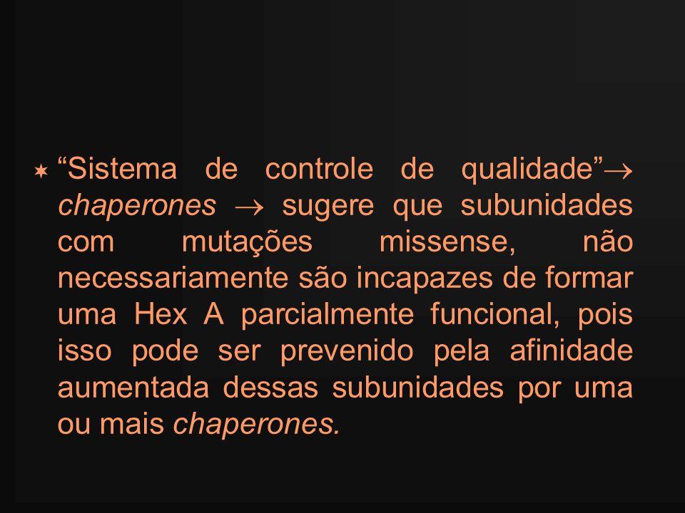 Sistema de controle de qualidade chaperones sugere que subunidades com mutações missense, não necessariamente são incapazes de formar uma Hex A parcia