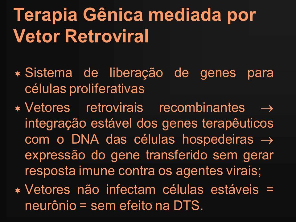 Terapia Gênica mediada por Vetor Retroviral Sistema de liberação de genes para células proliferativas Vetores retrovirais recombinantes integração est