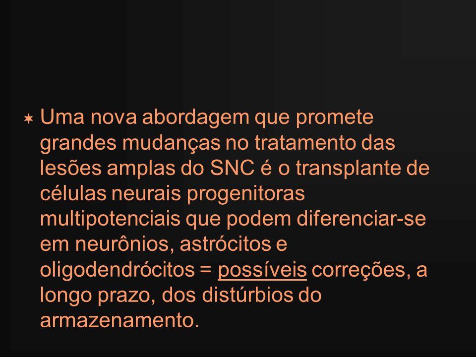 Uma nova abordagem que promete grandes mudanças no tratamento das lesões amplas do SNC é o transplante de células neurais progenitoras multipotenciais