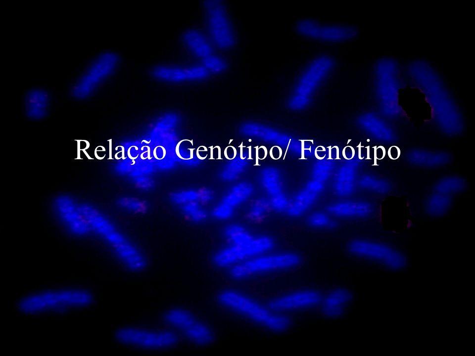 Relação Genótipo/ Fenótipo