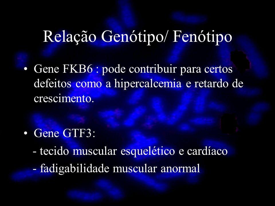 Relação Genótipo/ Fenótipo Gene FKB6 : pode contribuir para certos defeitos como a hipercalcemia e retardo de crescimento. Gene GTF3: - tecido muscula