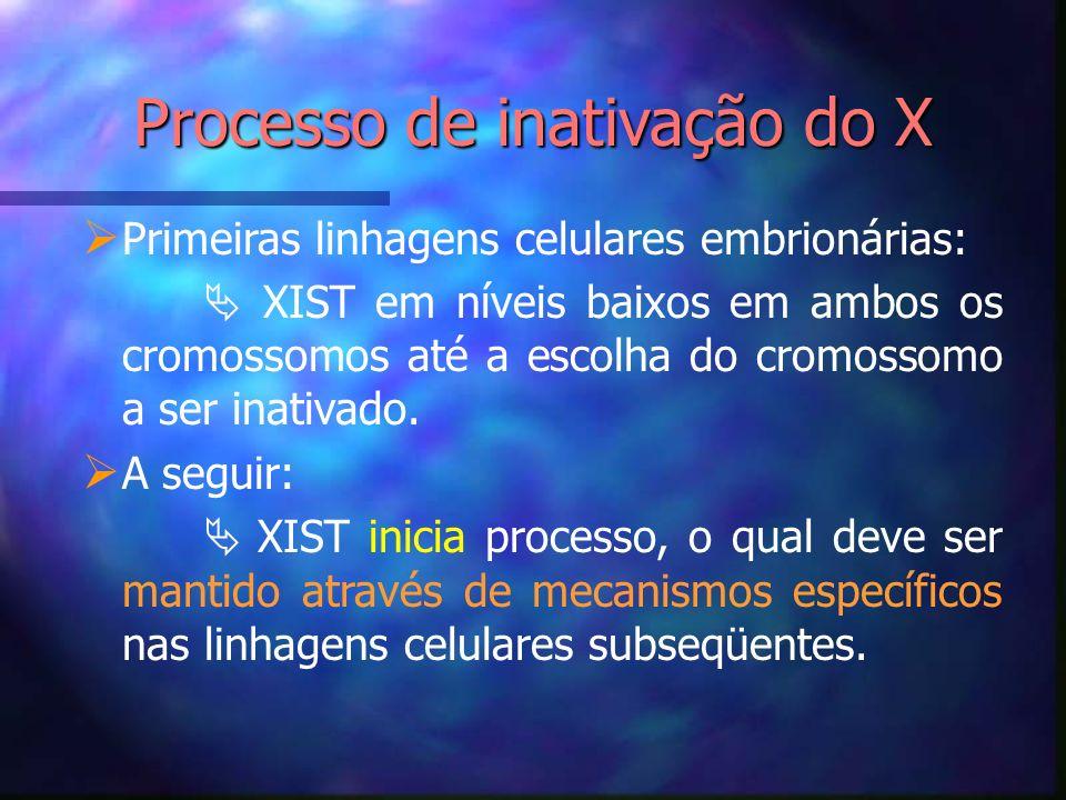 Processo de inativação do X Primeiras linhagens celulares embrionárias: XIST em níveis baixos em ambos os cromossomos até a escolha do cromossomo a se