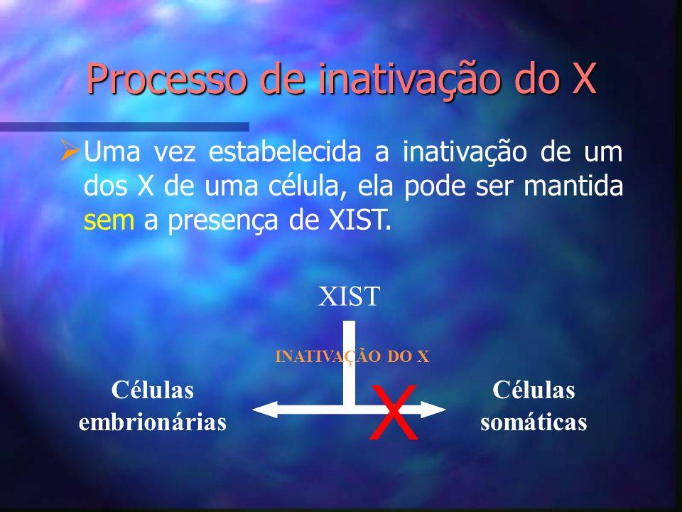 Processo de inativação do X Uma vez estabelecida a inativação de um dos X de uma célula, ela pode ser mantida sem a presença de XIST. XIST Células emb