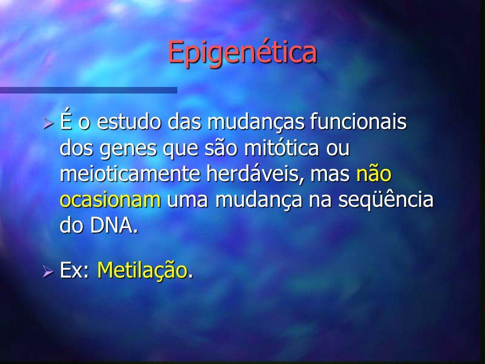 Epigenética É o estudo das mudanças funcionais dos genes que são mitótica ou meioticamente herdáveis, mas não ocasionam uma mudança na seqüência do DN