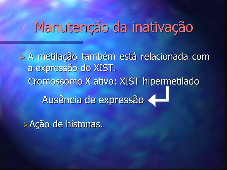 Manutenção da inativação A metilação também está relacionada com a expressão do XIST. A metilação também está relacionada com a expressão do XIST. Cro