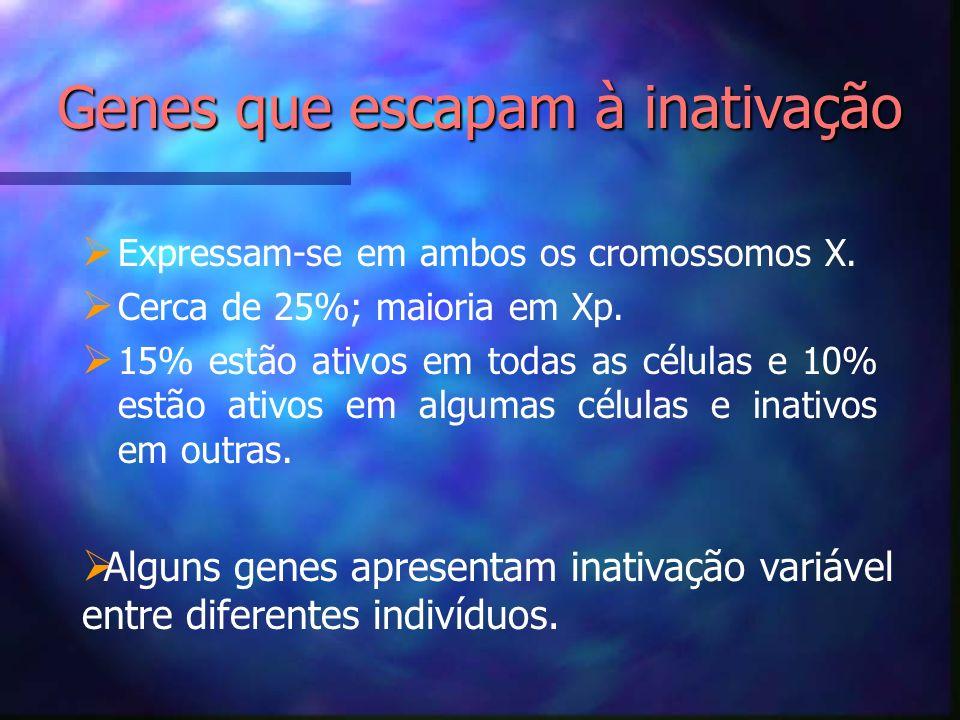 Genes que escapam à inativação Expressam-se em ambos os cromossomos X. Cerca de 25%; maioria em Xp. 15% estão ativos em todas as células e 10% estão a