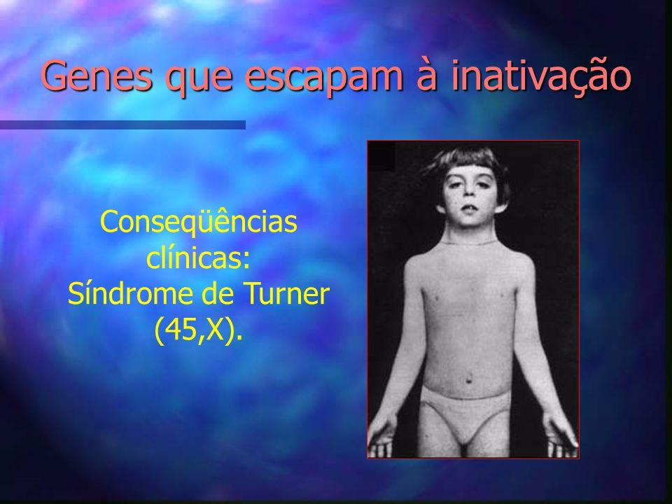 Conseqüências clínicas: Síndrome de Turner (45,X). Genes que escapam à inativação