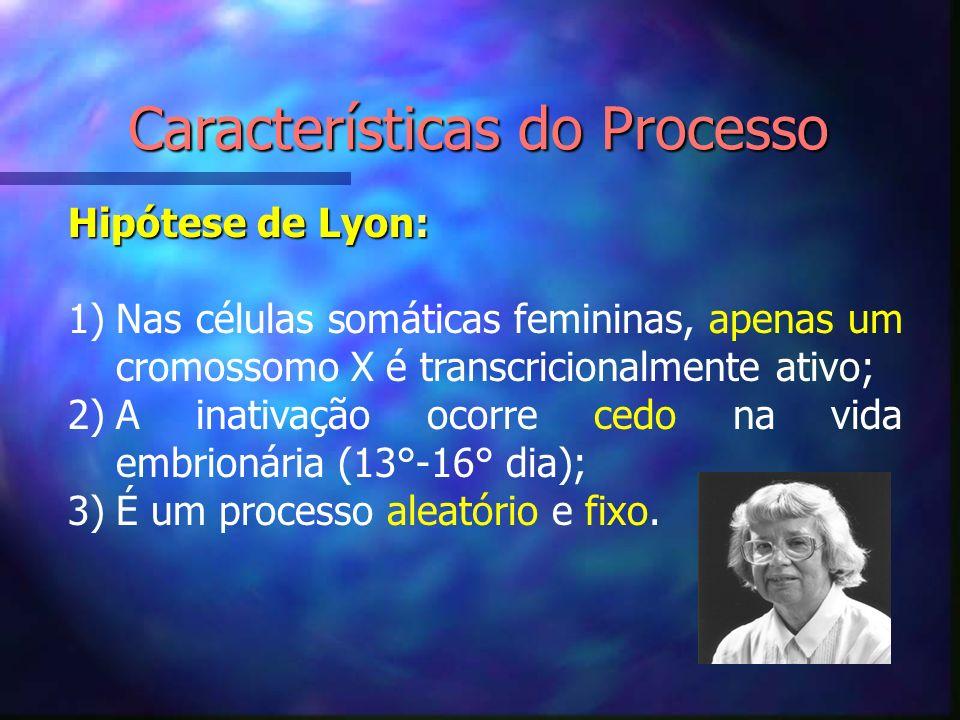 Características do Processo Hipótese de Lyon: 1)Nas células somáticas femininas, apenas um cromossomo X é transcricionalmente ativo; 2)A inativação oc