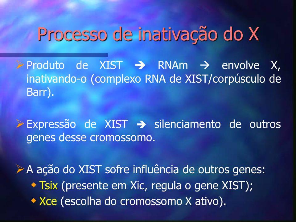 Processo de inativação do X Produto de XIST RNAm envolve X, inativando-o (complexo RNA de XIST/corpúsculo de Barr). Expressão de XIST silenciamento de