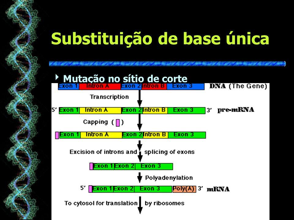 Substituição de base única Mutação no sítio de corte