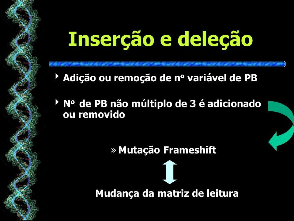 Inserção e deleção Adição ou remoção de n o variável de PB N o de PB não múltiplo de 3 é adicionado ou removido »Mutação Frameshift Mudança da matriz de leitura