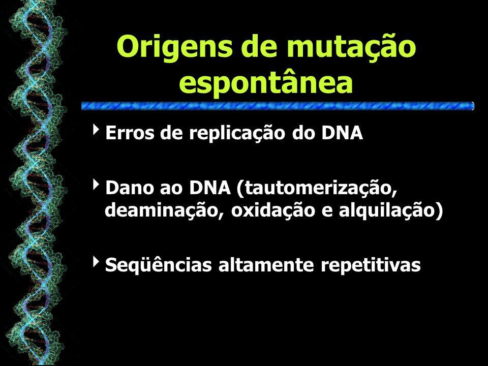 Origens de mutação espontânea Erros de replicação do DNA Dano ao DNA (tautomerização, deaminação, oxidação e alquilação) Seqüências altamente repetitivas