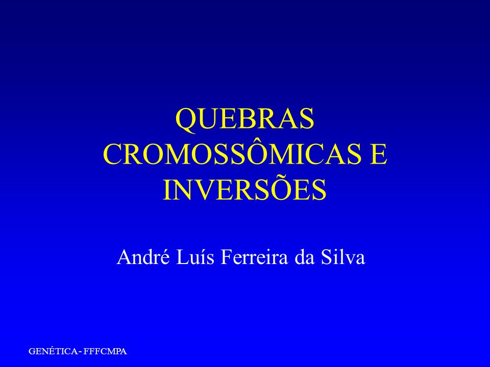 GENÉTICA - FFFCMPA QUEBRAS CROMOSSÔMICAS E INVERSÕES André Luís Ferreira da Silva