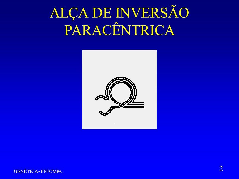 GENÉTICA - FFFCMPA 2 ALÇA DE INVERSÃO PARACÊNTRICA